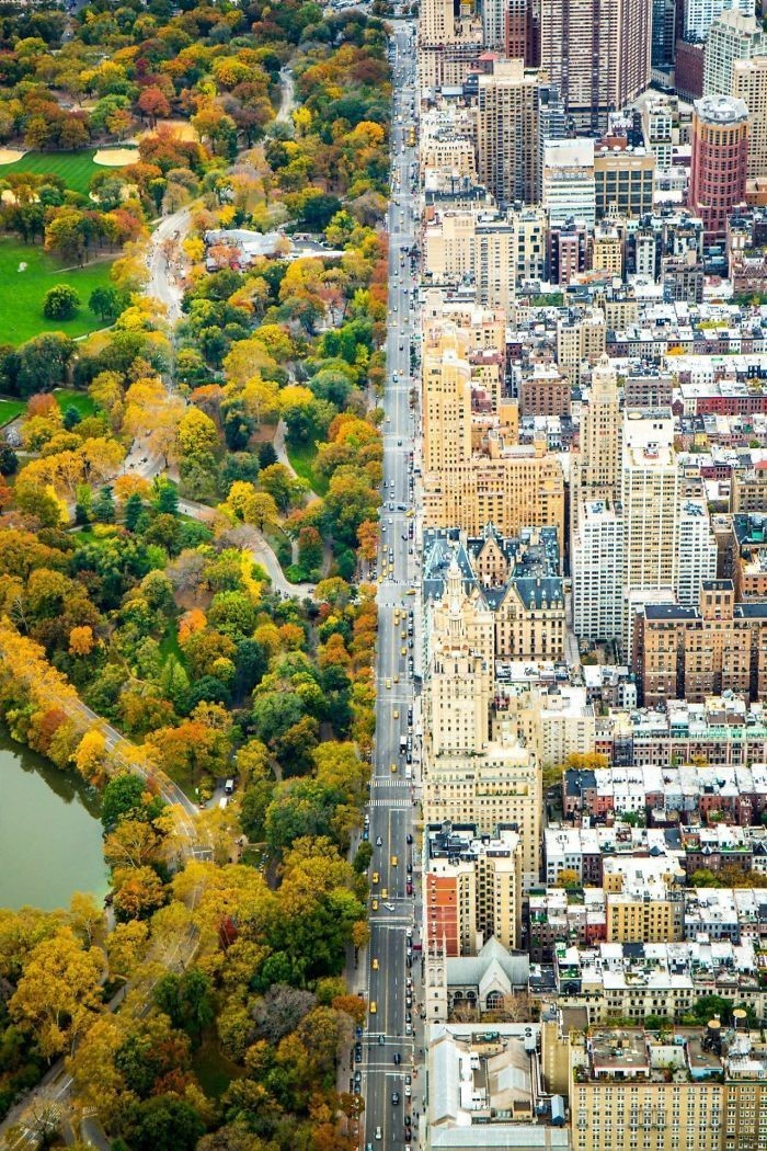 Central park ve New York.